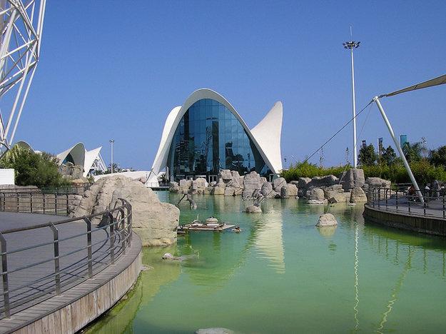 L'Oceanografic vo Valencii.