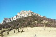 Pohľad zMedziholia na vrchol Rozsutca.