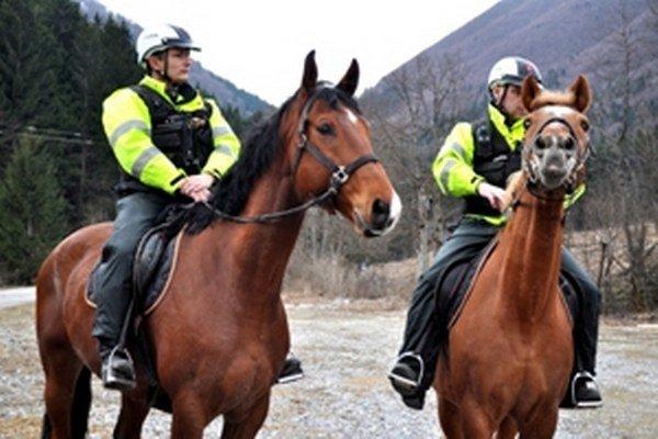 Kone sú na ľudí zvyknuté