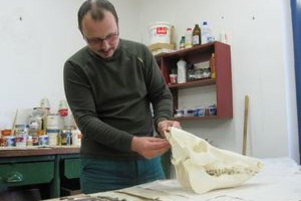 Fedor Sedílek s lebkou diviaka. Podľa výrezu zo zubov vychádza, že  diviak  mal okolo 17 rokov.