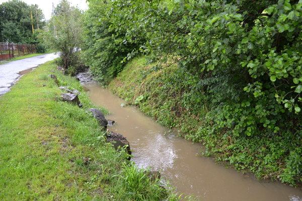 V miestnom potoku našiel Pčolinčan nevybuchnuté delostrelecké míny.