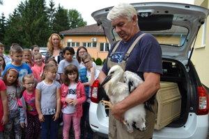 Krúžkovanie a vkladanie bocianov do hniezd pozorne sledovali miestne deti. Jednému z bocianov dali meno Alex. Hodí sa pre chlapcov i dievčatá.