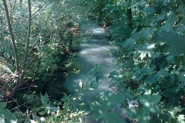 Leštinský potok sa vyfarbil do biela.