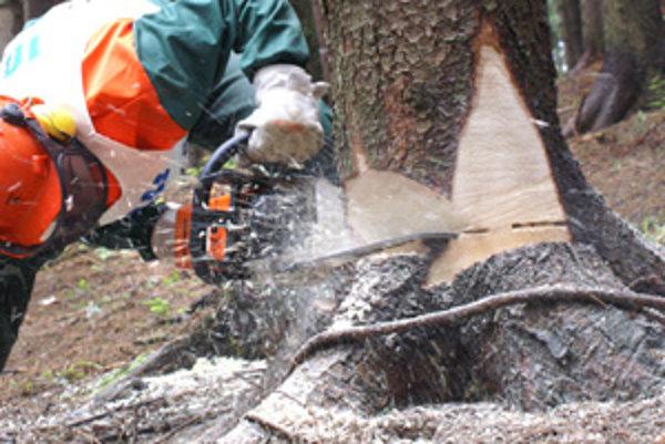 Motorová píla dnes nahradila sekery a ručné pílky. Čas spílenia stromu sa už počíta v sekundách.