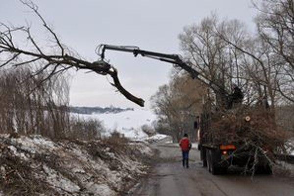 Stromy odvezú a spracujú na drevnú štiepku.