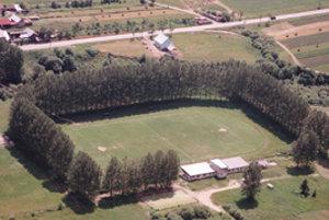 Vysoké topole komplikovali údržbu trávnika.