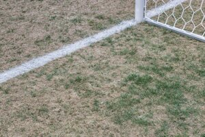 Trnavský trávnik postihla pleseň.
