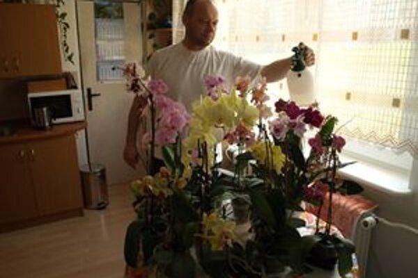 V rodine Spišských majú až 23 orchideí, pohľad na ne vždy stojí zato.