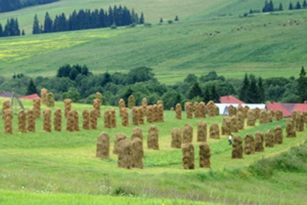 Drobné políčka mútnianskeho chotára obrábajú gazdovia bez techniky. Ilustračná snímka.