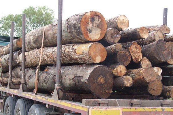 Poslanec Jozef Kotleba už v septembri minulého roku informoval MsZ otom, že pri svojej obhliadke mesta nadobudol podozrenie, že kogeneračná jednotka spaľuje kvalitné drevo.