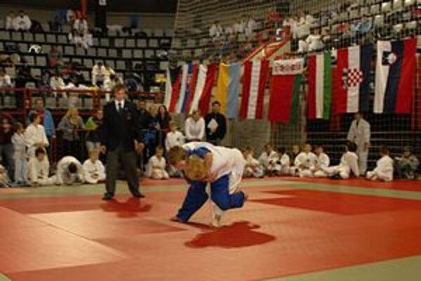 Na Považí bola bohatá medzinárodná konkurencia.