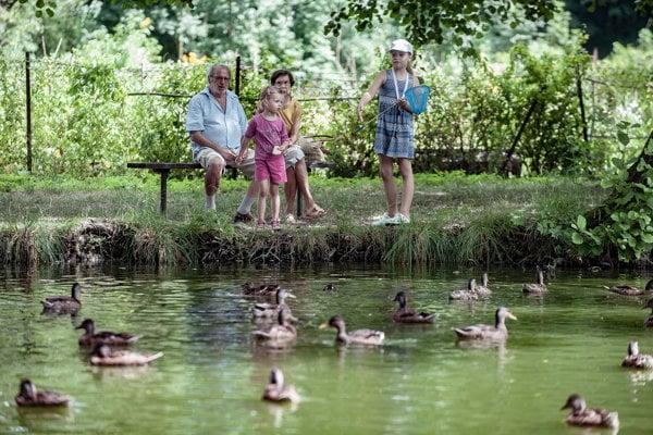 Rybník je obľúbeným miestom relaxu pre ľudí zo širokého okolia.