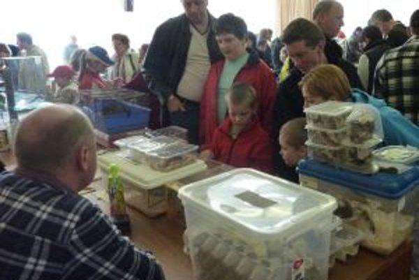 Obľúbená výstavaPočas dňa sa na ňu prišlo pozrieť viac než stopäťdesiat ľudí.