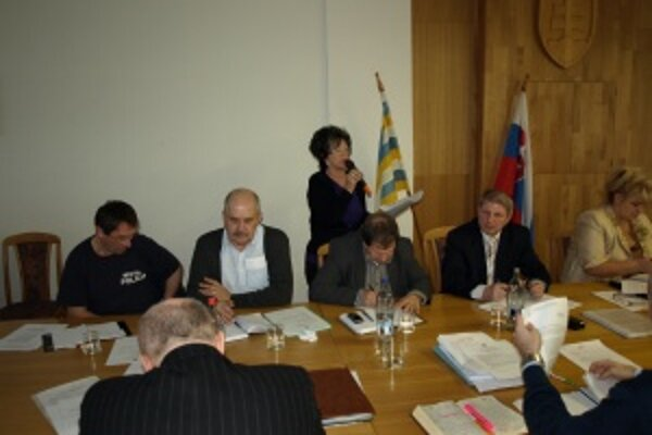 Valéria Dobrotová vystúpila na mestskom zastupiteľstve, aby vysvetlila svoje stanovisko ku klastru. K jej názoru sa priklonili aj ostatní podniakatelia v meste.
