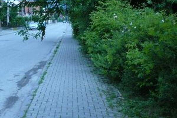 Mesto bude čistiť chodníky len tak, ako mu to dovolí kríza.