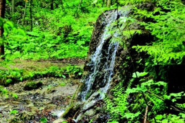 Drevené žľaby. Jazierka sú spájané kľukatým tokom vody z horných rybníkov do dolných.