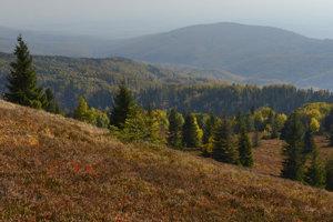Pohľad z Kojšovskej hole smerom na Zlatú Idku.