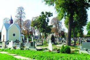 Mestský cintorín Šaľa.