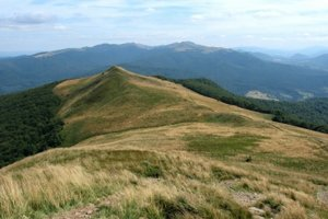 Východné Karpaty na pomedzí Poľska a Ukrajiny.