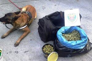 Policajti našli marihuanu v aute pri bežnej kontrole.