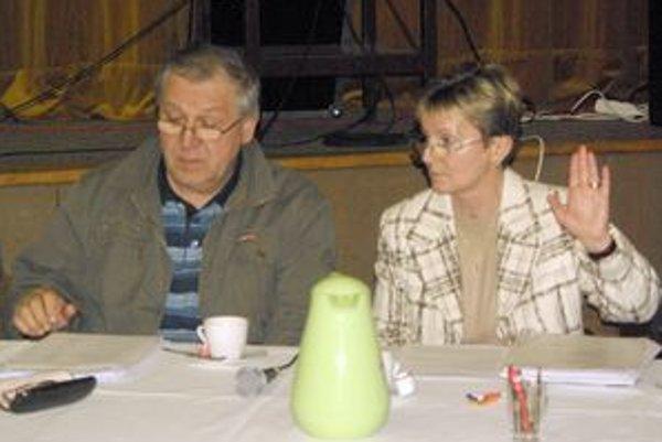 Na zastupiteľstvách v roku 2011 budú hlasovať noví poslanci. Jedinou, ktorá zostala v mestskom parlamente po voľbách je Ľudmila Hujová. FOTO: AUTOR