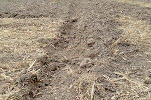 Tvrdá pôda zabraňuje kvalitnej orbe.