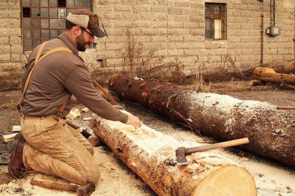 Korytá vytvoril americký umelec v rámci projektu, v ktorom skúma les a život v ňom.