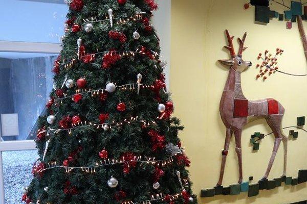 Stromček v nemocnici.