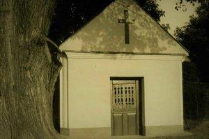Dobový záber kaplnky a stromu.
