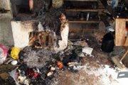 Hercova milovaná drevenica v roku 2009 takmer zhorela.