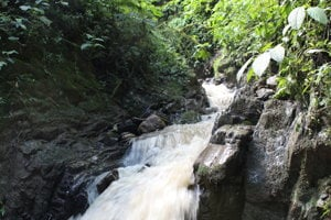 Rieka, v ktorej našli prvú žabu druhu telmatobius yuracare v prírode po desiatich rokoch.