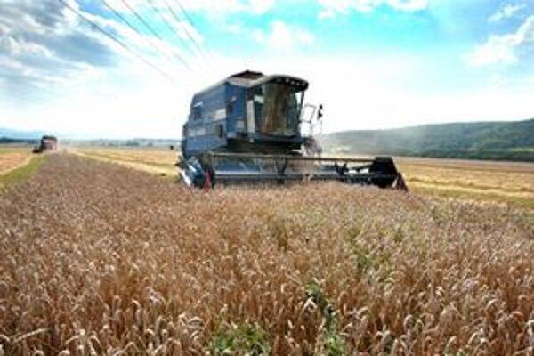 Aj keď bol úvod leta upršaný, o úrodu sa poľnohospodári nestrachujú.