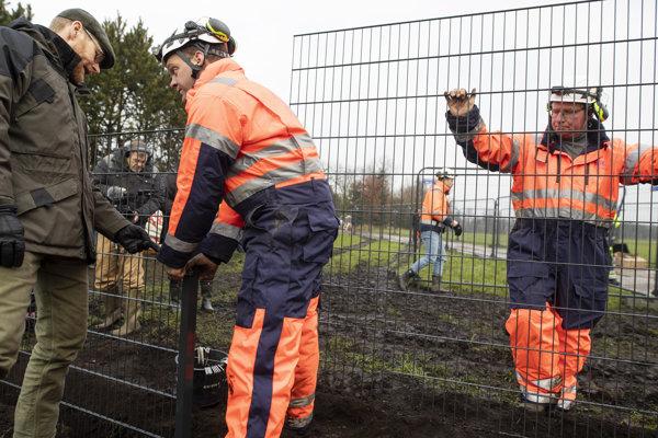 Plot stavajú kvôli moru ošípaných.