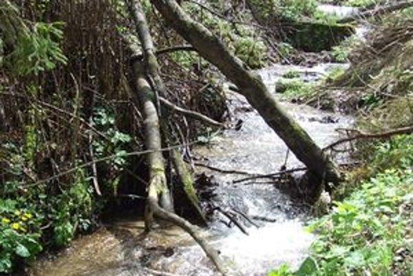 Hladiny vodných tokov pomaly klesajú. Na niektorých územia však stále prší, takže možno ešte nepovedali svoje posledné slovo.