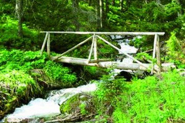 Lavičky a mostíky sa čoskoro dočkajú opravy.