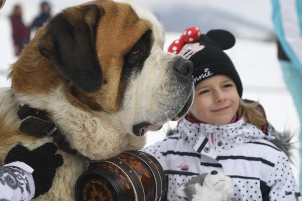 Milovníci psov si počas podujatia v Tatranskej Lomnici prišli na svoje.
