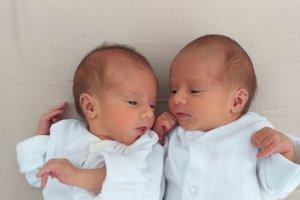 Nina (1900 g a 43 cm) a Lujza (2260 g a 45 cm) Pazderové sa narodili 17. januára Vladimíre a Martinovi z Horoviec.
