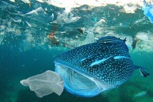 Každoročne sa do oceánov dostane deväť miliónov ton plastového odpadu.