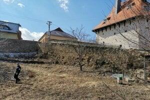 Na pozemku pod hradným múrom sú umiestňované túlavé psy.