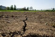Podobné experimenty môžu pomôcť pri hľadaní odrôd, ktoré lepšie zvládajú zvyšujúce sa teploty a sucho.