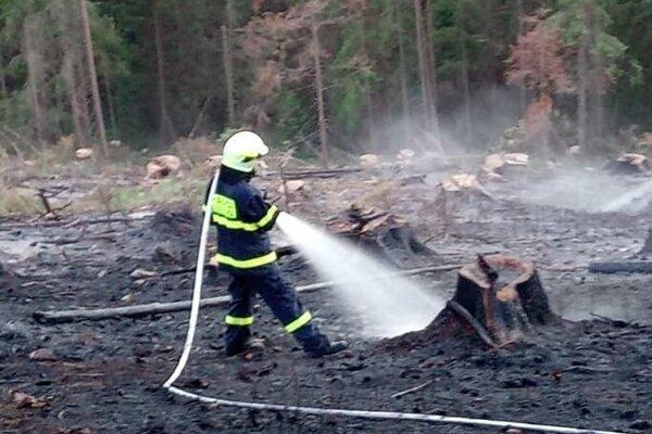 Nedávno likvidovali hasiči dva lesné požiare v katastri Novej Bystrice.