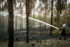 Protipožiarny systém má pomôcť hasičom včas sa dostať k ohňu v lese.