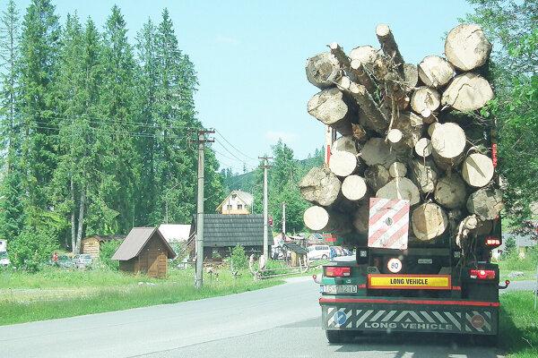 Aj z Oravíc musia odvážať stovky kubíkov lykožrútom napadnutého dreva.