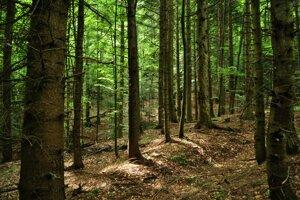 Medzinárodný náučný chodník Udava - Solinka prechádza prírodnou rezerváciou s najvyšším stupňom ochrany.