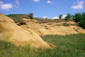 Čakanovský profil je dôkazom, že tu bolo kedysi plytké šelfové more.
