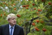 Boris Johnson v kampani