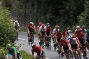 Peter Sagan v zelenom drese počas 12. etapy na Tour de France 2019.