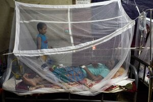 Horúčka dengue sa vyskytuje v trópoch a šíri ju druh komára, ktorý žije prevažne v mestských oblastiach.