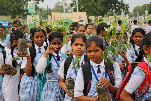V Indii sadili stromy.