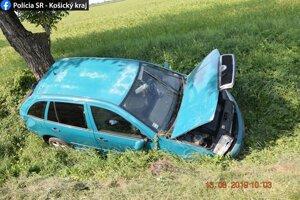 Auto skončilo v priekope vedľa cesty, šofér v rukách polície.